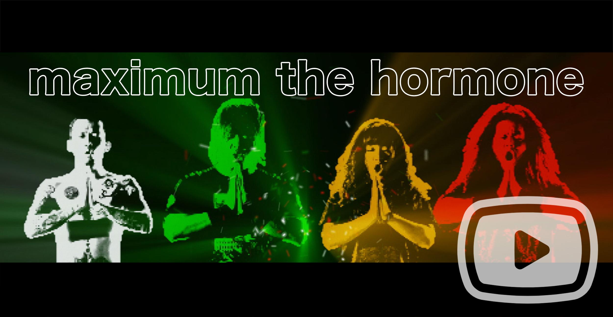 MAXIMUM THE HORMONE -Official English Website-